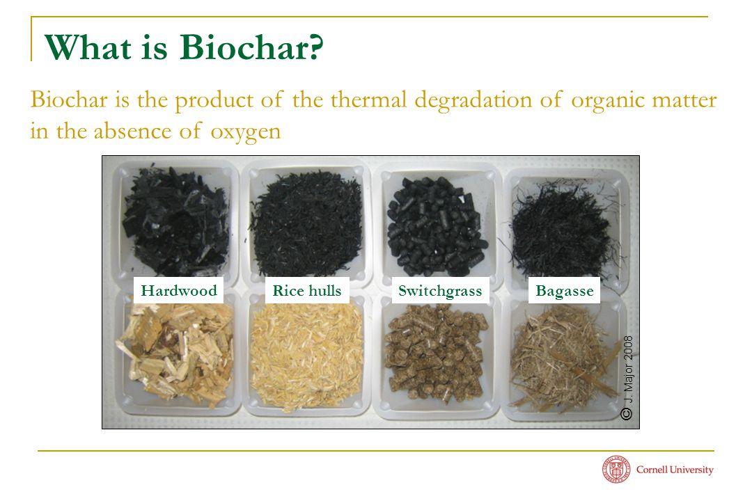 What is Biochar.