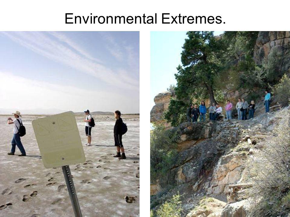 Environmental Extremes.