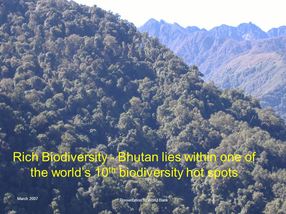 March 2007 Presentation to World Bank Rich Biodiversity - Bhutan lies within one of the world's 10 th biodiversity hot spots