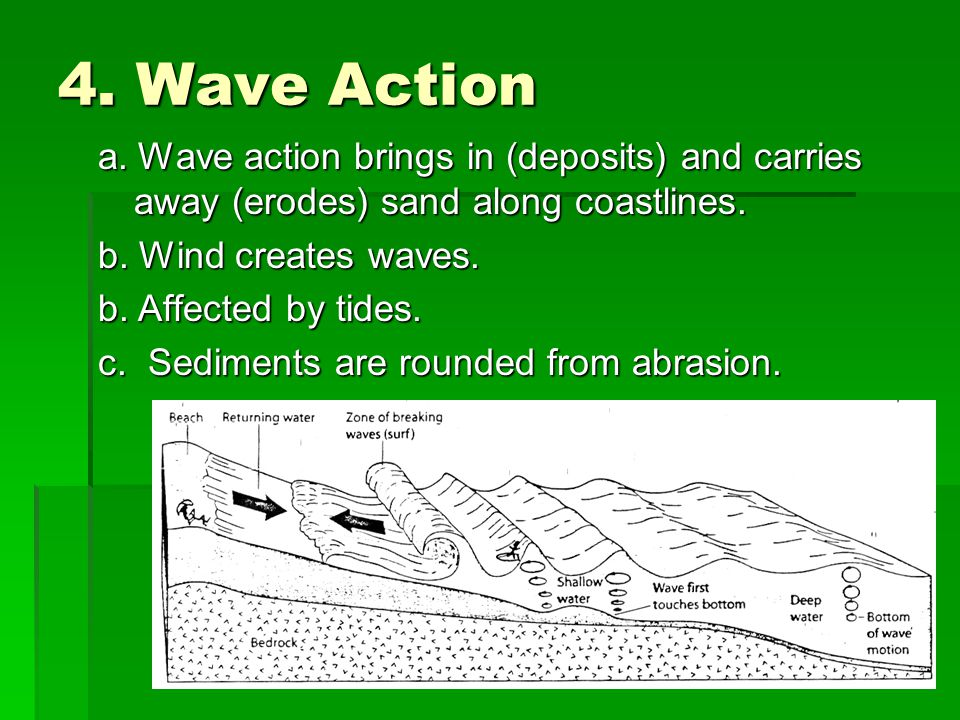 4. Wave Action a. Wave action brings in (deposits) and carries away (erodes) sand along coastlines. b. Wind creates waves. b. Affected by tides. c. Se