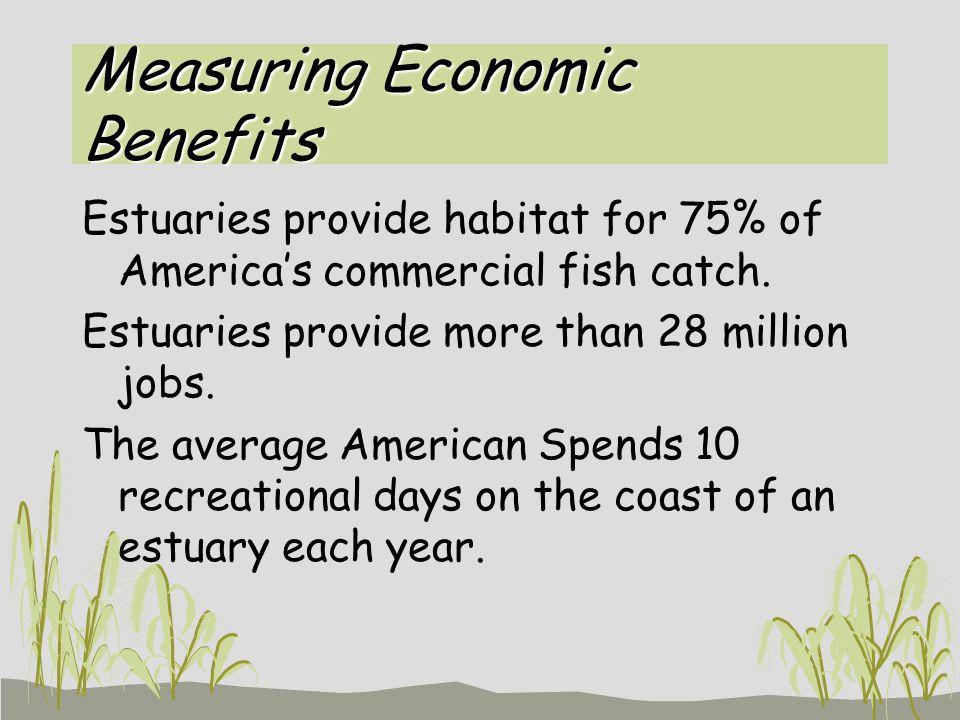 Measuring Economic Benefits Estuaries provide habitat for 75% of America's commercial fish catch.