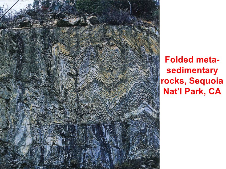 Folded meta- sedimentary rocks, Sequoia Nat'l Park, CA