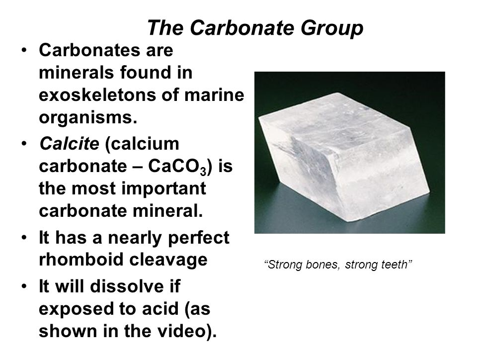 The Carbonate Group Carbonates are minerals found in exoskeletons of marine organisms. Calcite (calcium carbonate – CaCO 3 ) is the most important car