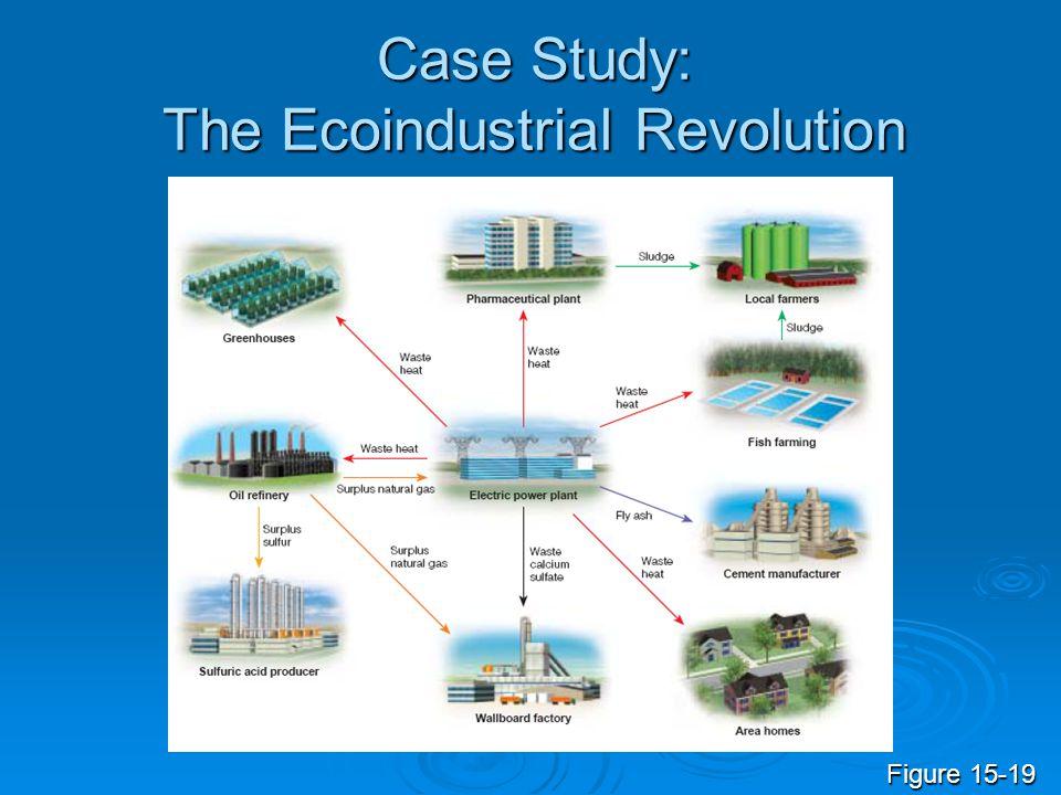 Case Study: The Ecoindustrial Revolution Figure 15-19