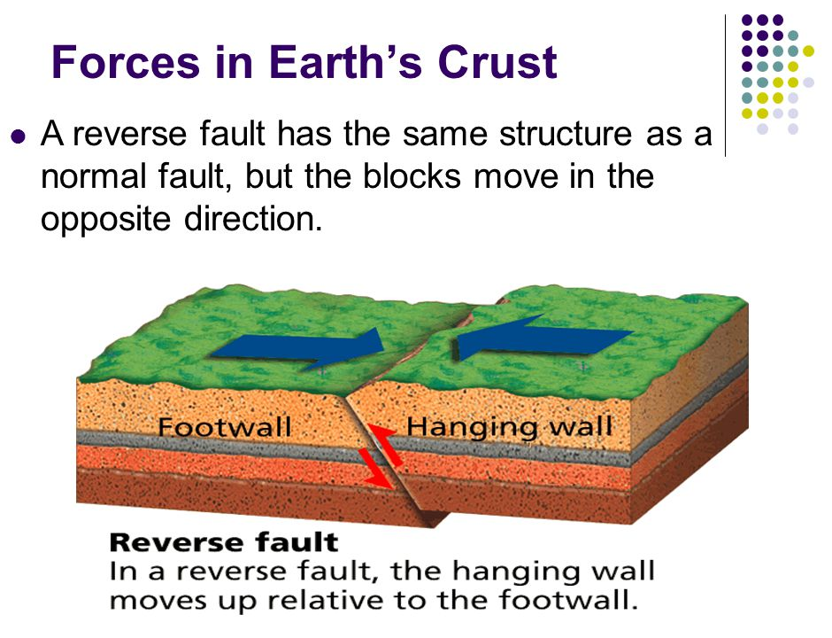 Forces in Earth's Crust A reverse fault has the same structure as a normal fault, but the blocks move in the opposite direction.