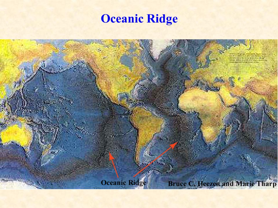 The types of boundary between plates are distinguished by the type of relative plate motion along the boundary: Oceanic Ridge – Divergence Transform Margins – Horizontal slip Oceanic Trench – Convergence