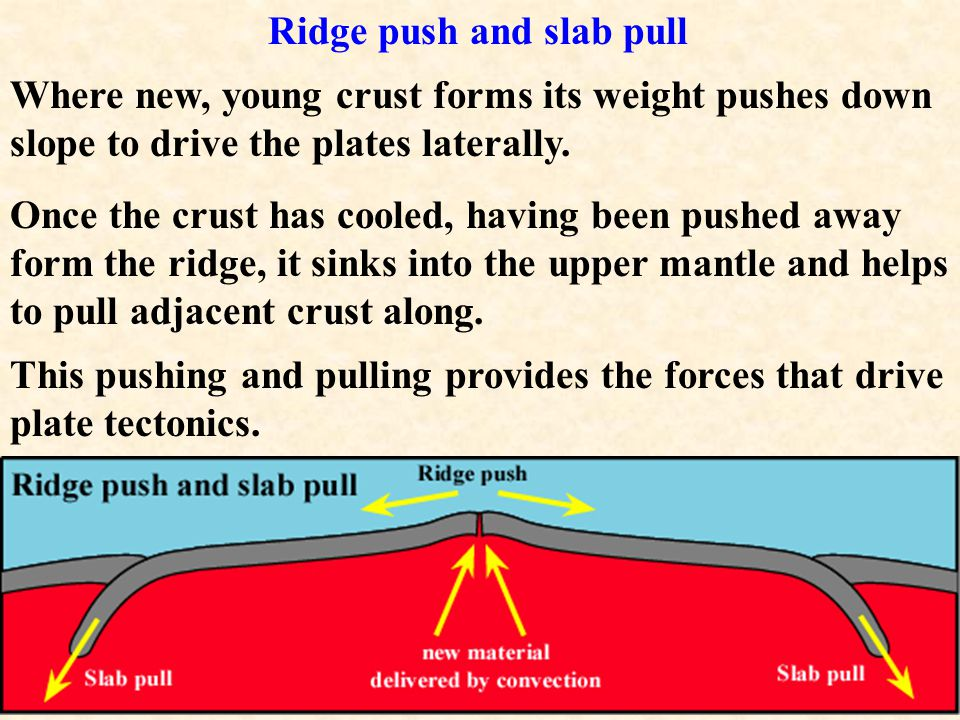 Here's a link to an animation showing how convection might drive plate tectonics.link