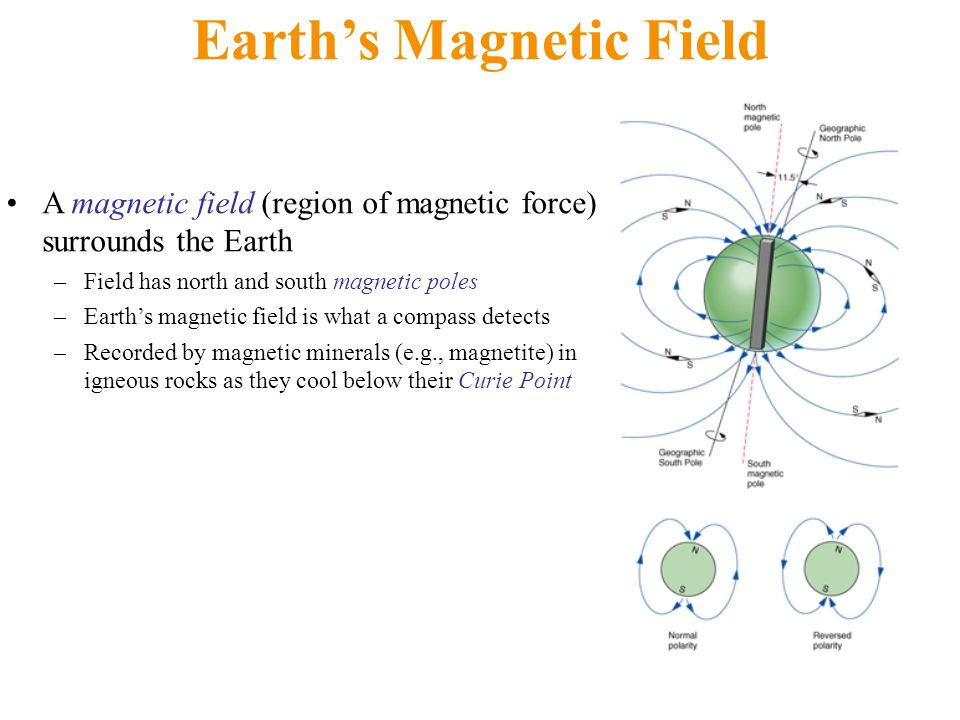 Earth's Magnetic Field A magnetic field (region of magnetic force) surrounds the Earth –Field has north and south magnetic poles –Earth's magnetic fie