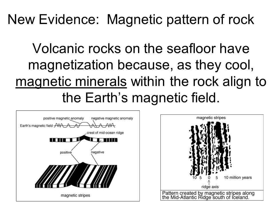Volcanic rocks on the seafloor have magnetization because, as they cool, magnetic minerals within the rock align to the Earth's magnetic field.
