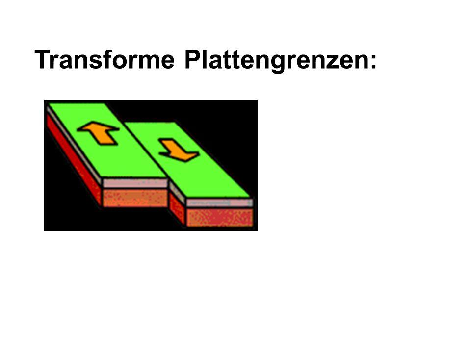 Transforme Plattengrenzen: