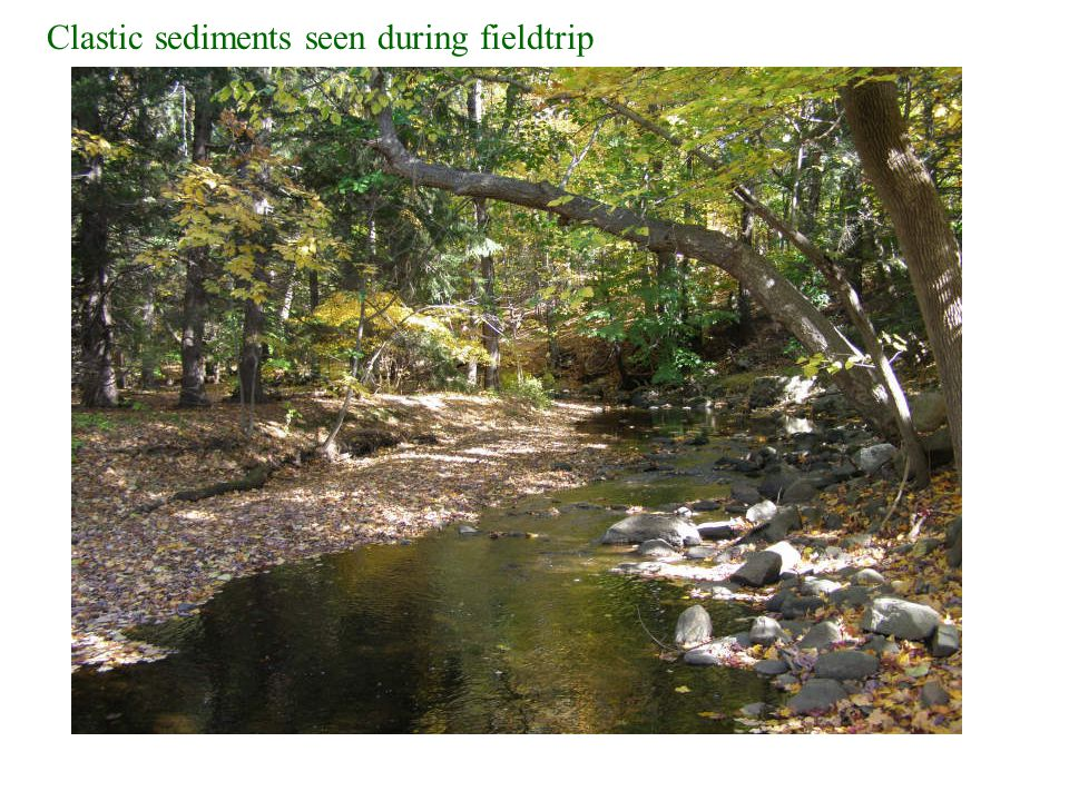 Clastic sediments seen during fieldtrip