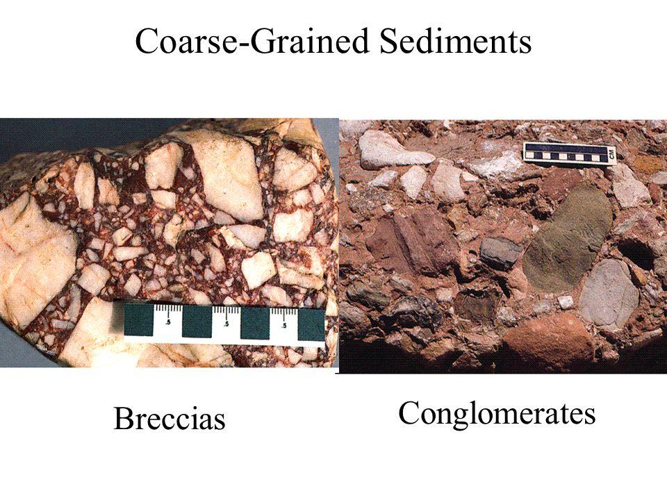 Coarse-Grained Sediments Breccias Conglomerates
