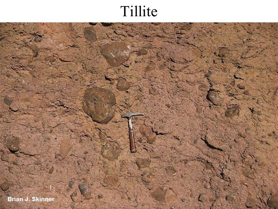 Tillite Brian J. Skinner
