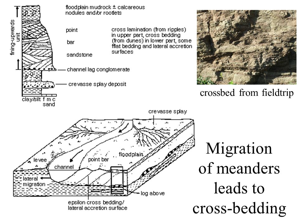 Migration of meanders leads to cross-bedding crossbed from fieldtrip