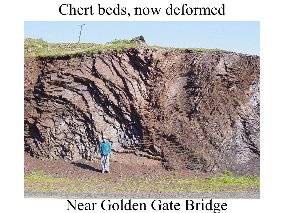 Chert beds, now deformed Near Golden Gate Bridge