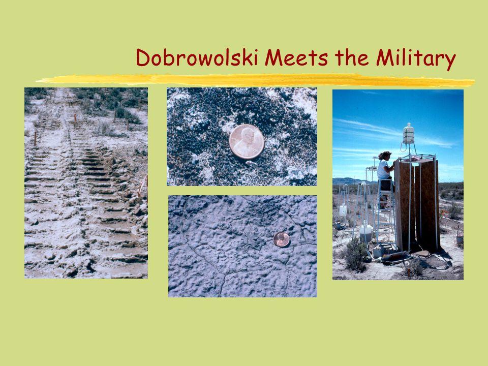 Dobrowolski Meets the Military