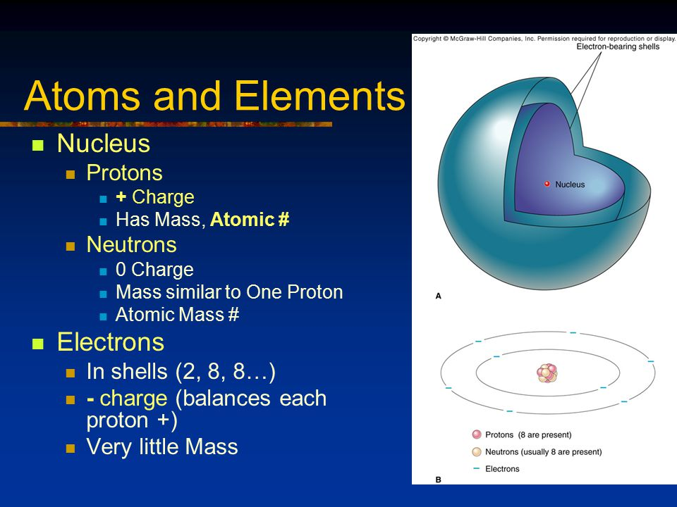 Atoms and Elements Nucleus Protons + Charge Has Mass, Atomic # Neutrons 0 Charge Mass similar to One Proton Atomic Mass # Electrons In shells (2, 8, 8…) - charge (balances each proton +) Very little Mass
