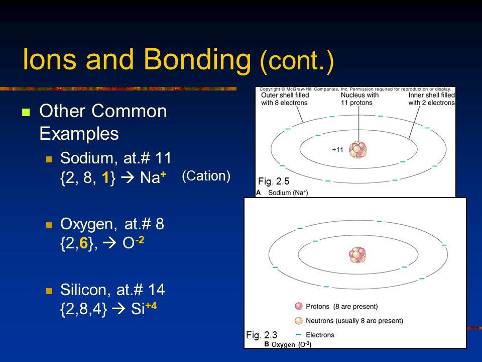 Ions and Bonding (cont.) Other Common Examples Sodium, at.# 11 {2, 8, 1}  Na + Oxygen, at.# 8 {2,6},  O -2 Silicon, at.# 14 {2,8,4}  Si +4 Fig.