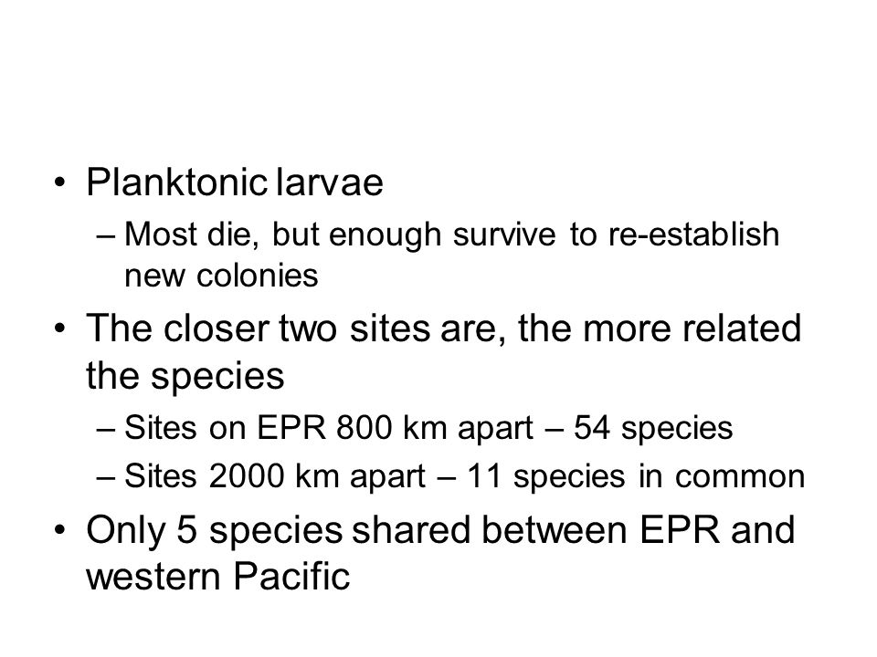 Planktonic larvae –Most die, but enough survive to re-establish new colonies The closer two sites are, the more related the species –Sites on EPR 800