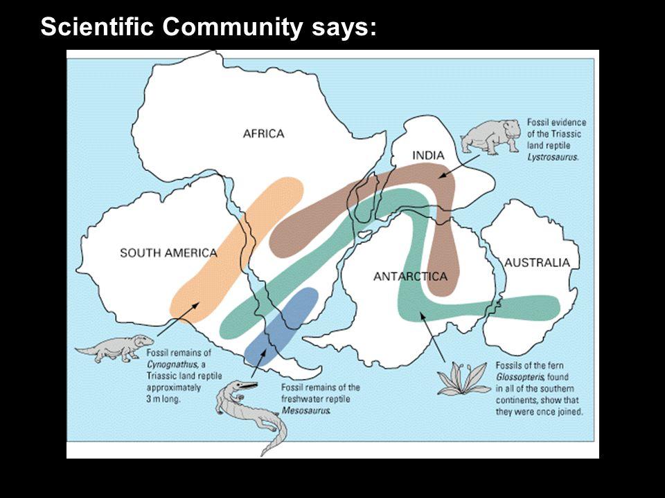 Scientific Community says: