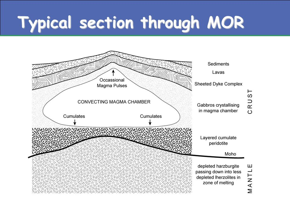Typical section through MOR