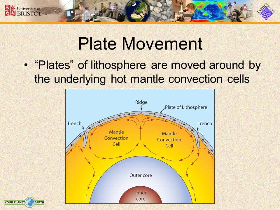 Plate Movement Plates of lithosphere are moved around by the underlying hot mantle convection cells