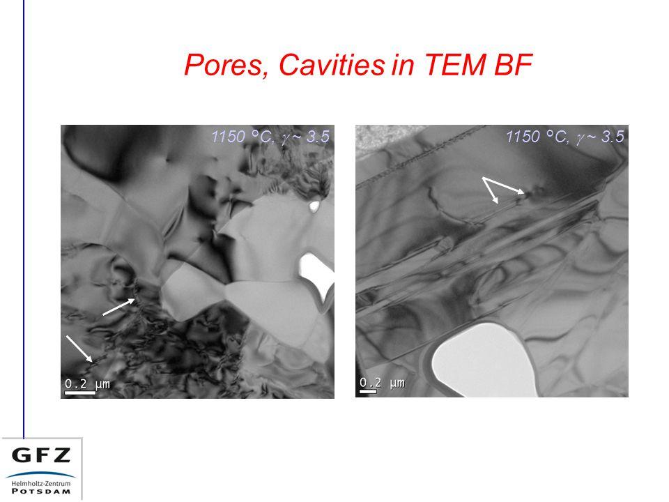 Pores, Cavities in TEM BF 1150 °C,  ~ 3.5