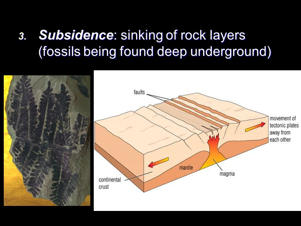 3. Subsidence: sinking of rock layers (fossils being found deep underground)
