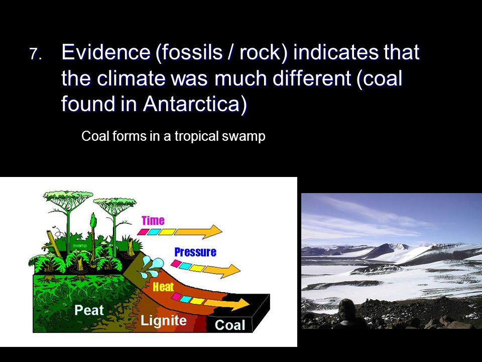 7. Evidence (fossils / rock) indicates that the climate was much different (coal found in Antarctica) Coal forms in a tropical swamp