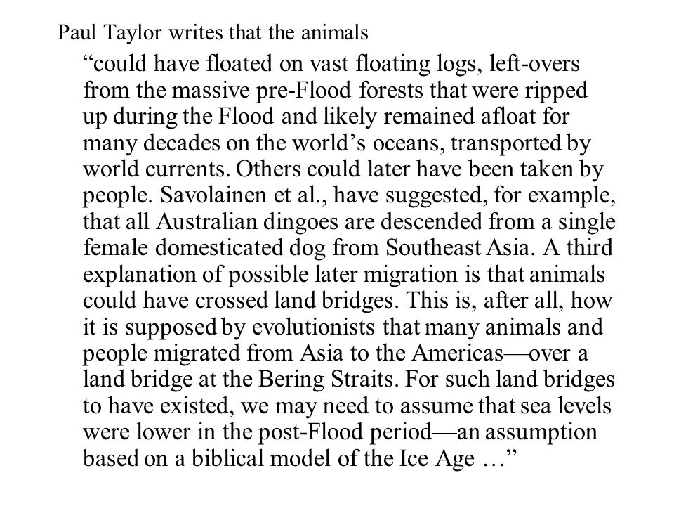 "Paul Taylor writes that the animals ""could have floated on vast floating logs, left-overs from the massive pre-Flood forests that were ripped up durin"