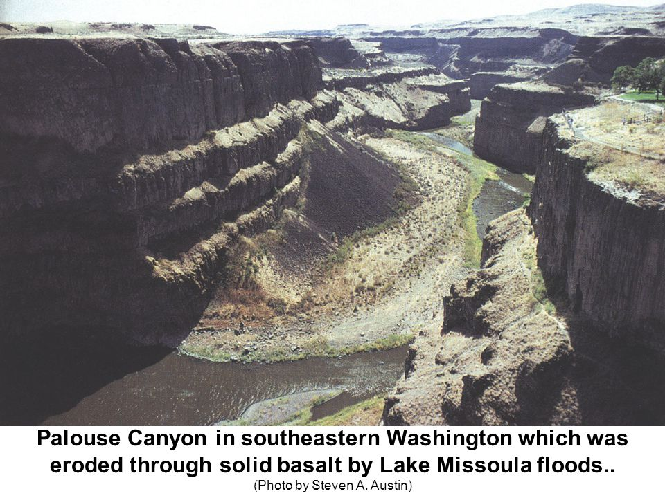 Palouse Canyon in southeastern Washington which was eroded through solid basalt by Lake Missoula floods.. ( (Photo by Steven A. Austin)