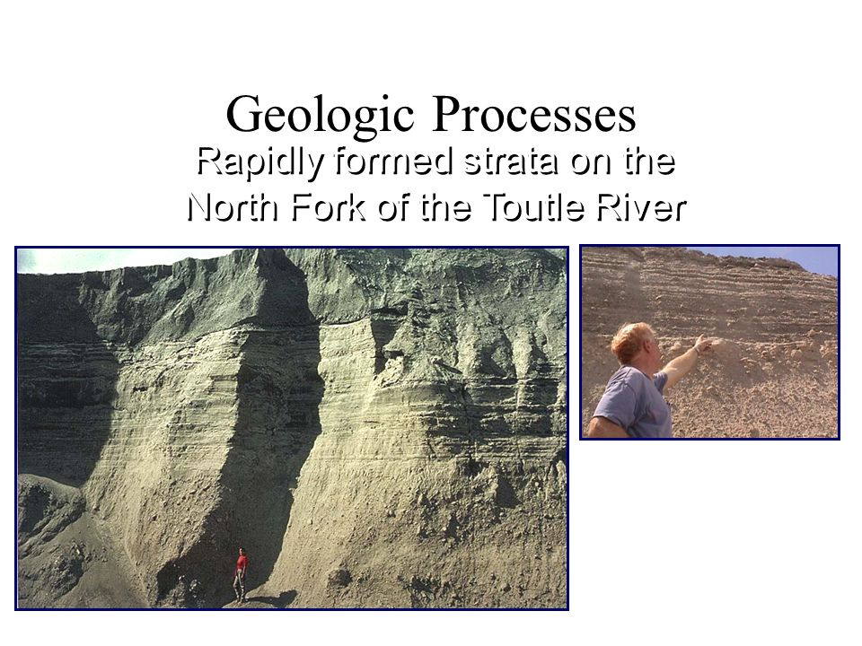 Rapidly formed strata on the North Fork of the Toutle River Geologic Processes