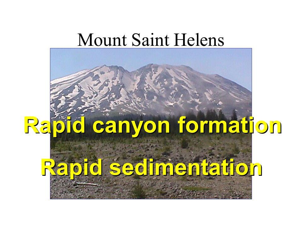 Mount Saint Helens Rapid canyon formation Rapid sedimentation