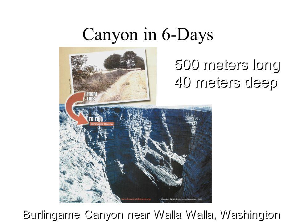 Canyon in 6-Days Burlingame Canyon near Walla Walla, Washington 500 meters long 40 meters deep