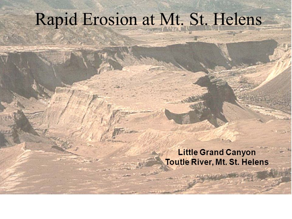On March 19, 1982 a small eruption melted the snow causing a mud flow, which eroded a canyon system up to 140 feet deep. Little Grand Canyon Toutle Ri