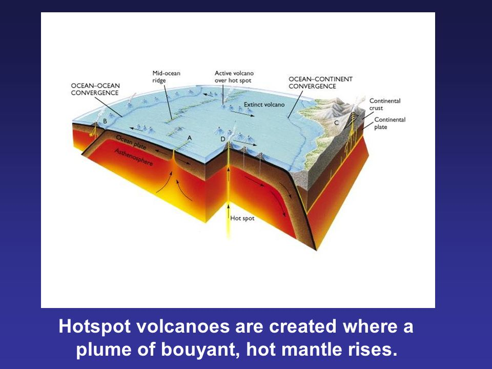 Hotspot volcanoes are created where a plume of bouyant, hot mantle rises.