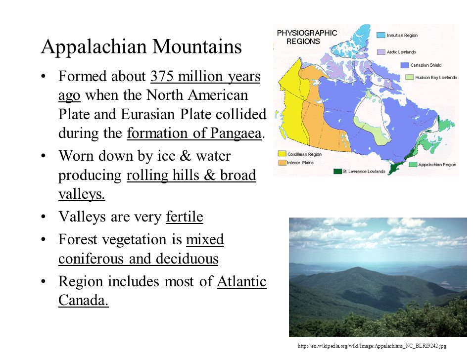 Appalachian Mountains Formed about 375 million years ago when the North American Plate and Eurasian Plate collided during the formation of Pangaea.