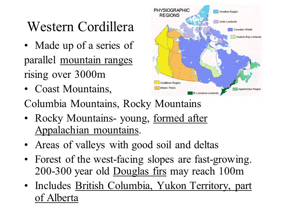 Western Cordillera Made up of a series of parallel mountain ranges rising over 3000m Coast Mountains, Columbia Mountains, Rocky Mountains Rocky Mountains- young, formed after Appalachian mountains.