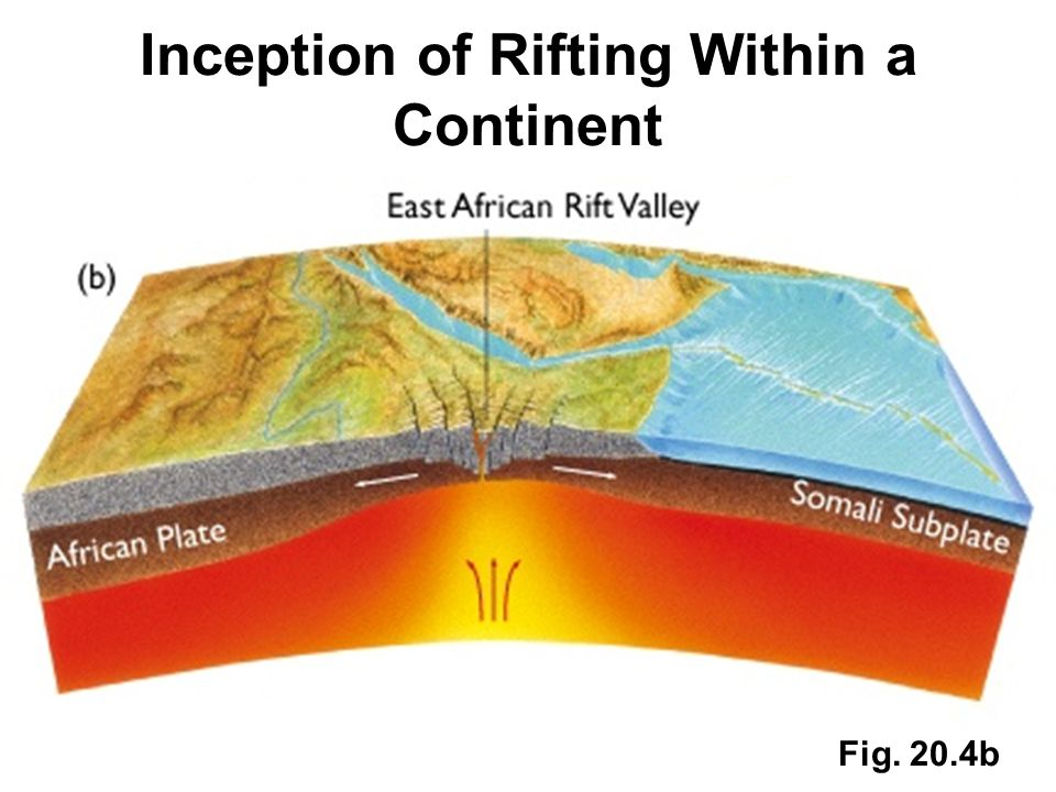Inception of Rifting Within a Continent Fig. 20.4b