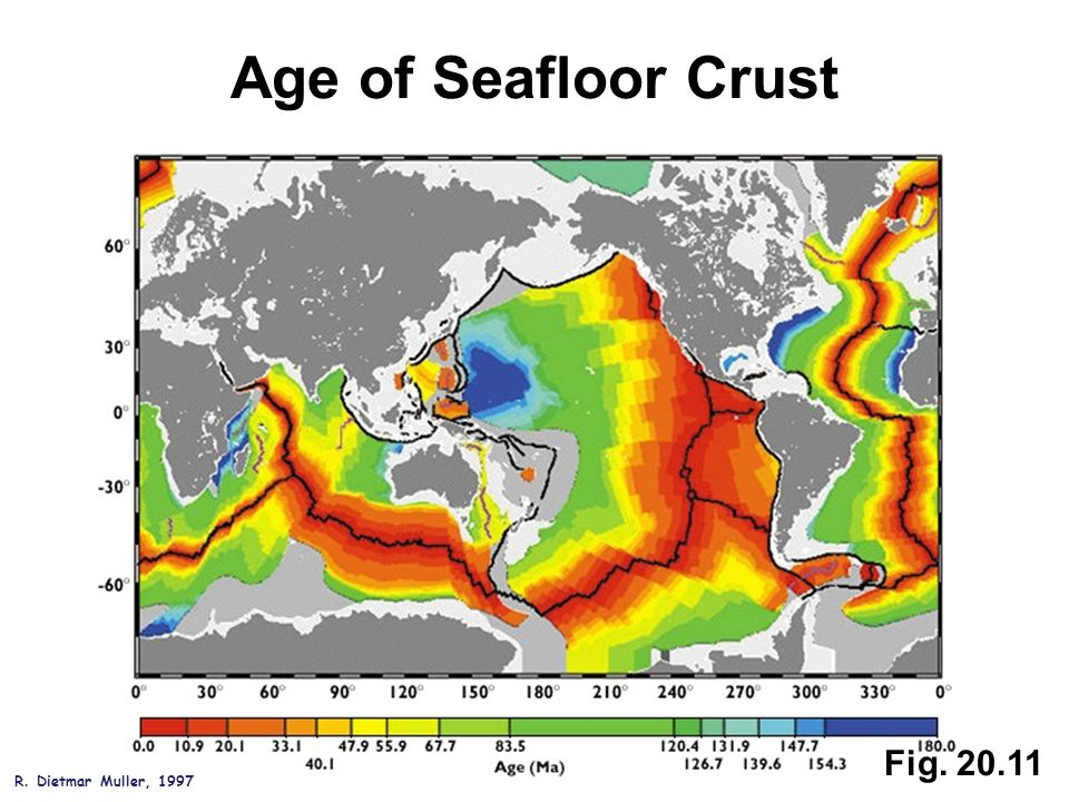 Fig. 20.11 Age of Seafloor Crust R. Dietmar Muller, 1997