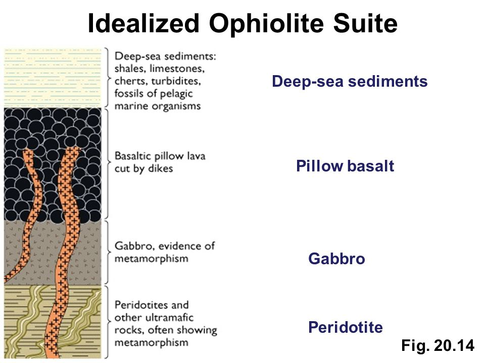 Fig. 20.14 Idealized Ophiolite Suite Peridotite Gabbro Pillow basalt Deep-sea sediments