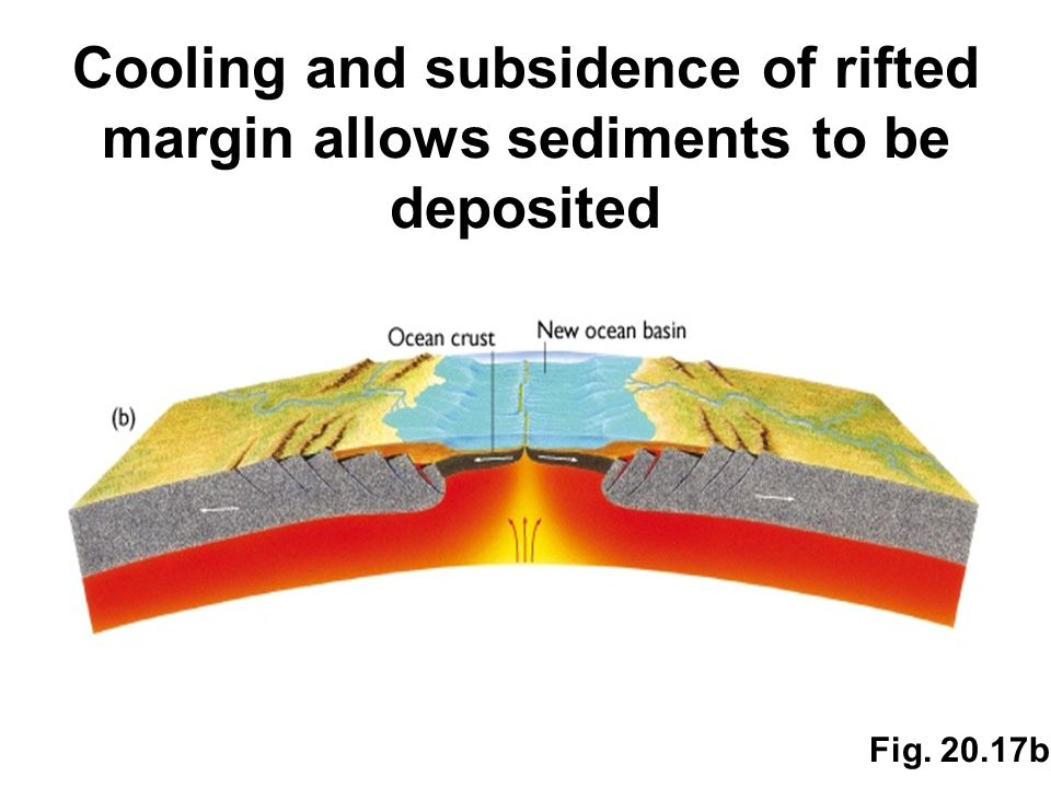 Cooling and subsidence of rifted margin allows sediments to be deposited Fig. 20.17b