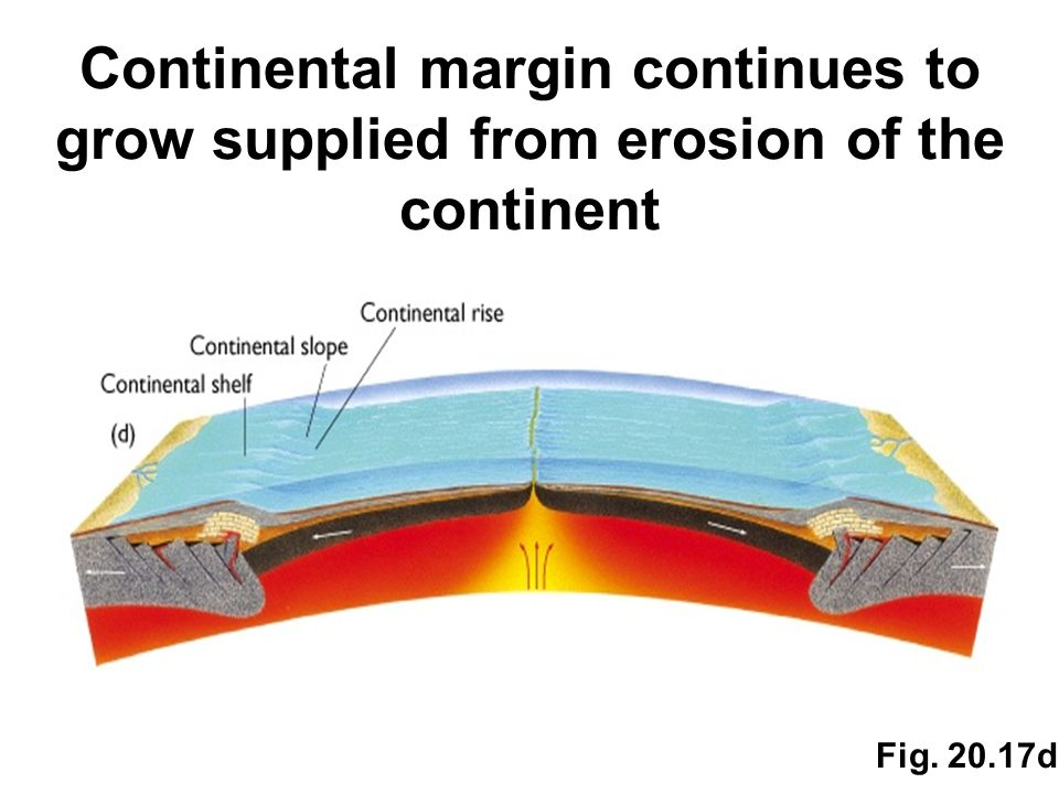 Continental margin continues to grow supplied from erosion of the continent Fig. 20.17d
