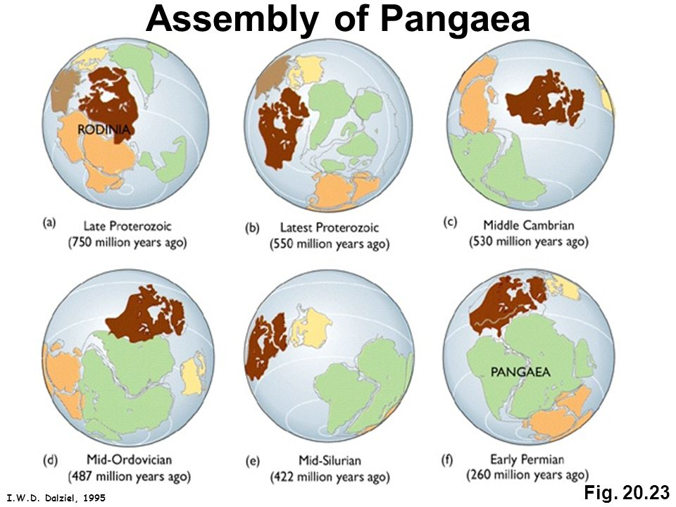 Fig. 20.23 Assembly of Pangaea I.W.D. Dalziel, 1995