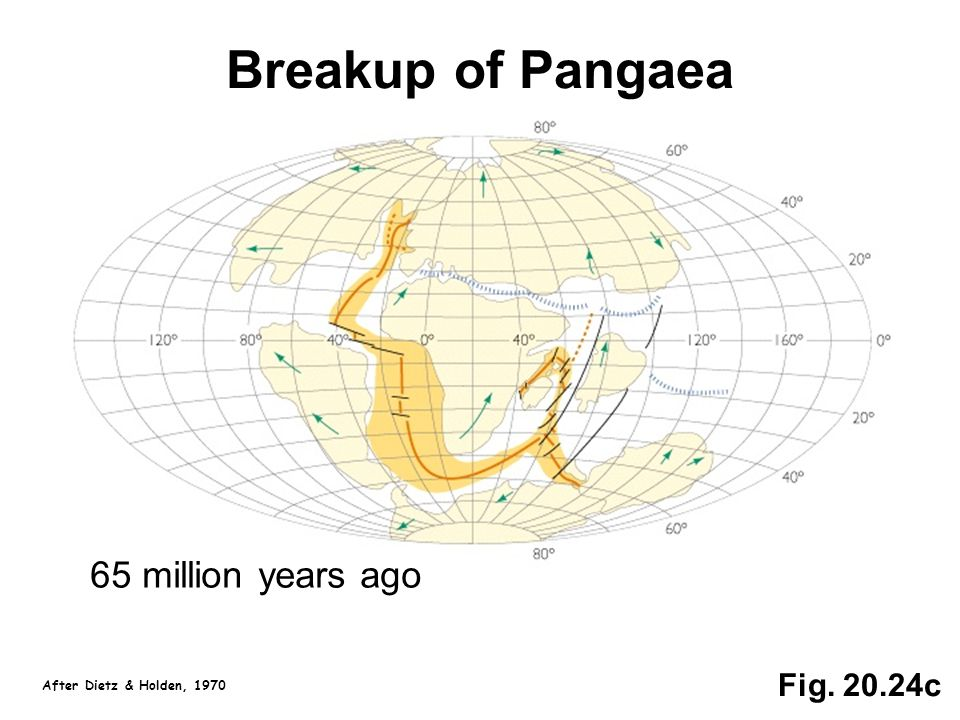 Fig. 20.24c Breakup of Pangaea 65 million years ago After Dietz & Holden, 1970