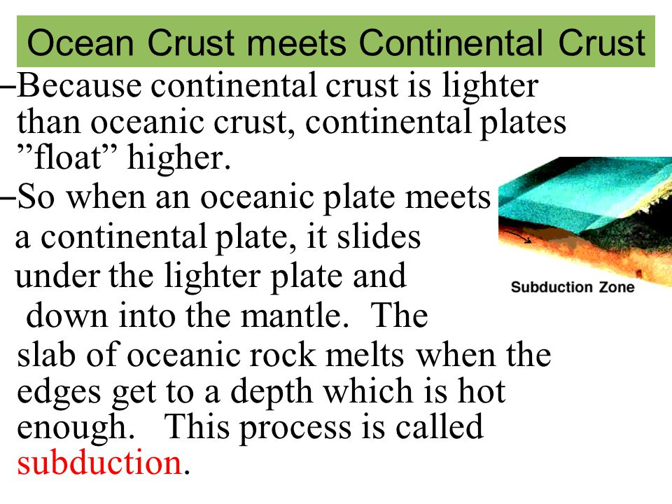 Ocean Crust meets Continental Crust – Because continental crust is lighter than oceanic crust, continental plates float higher.