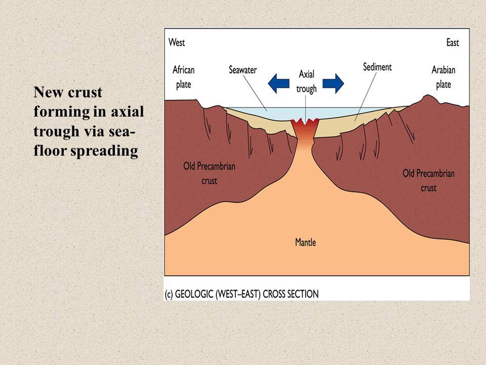 New crust forming in axial trough via sea- floor spreading