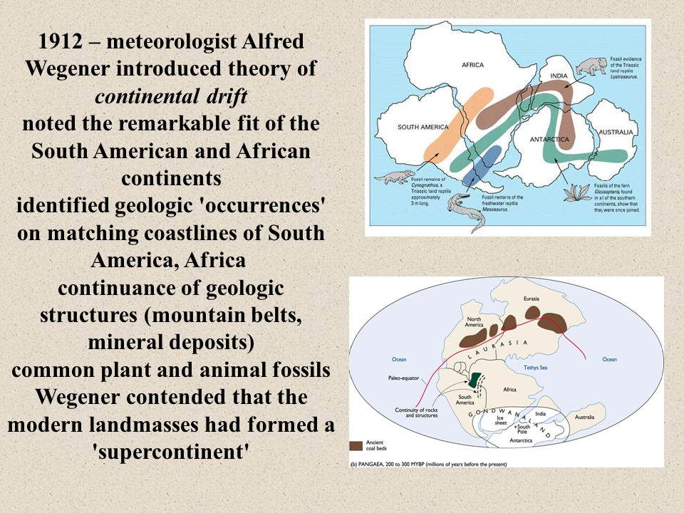 1912 – meteorologist Alfred Wegener introduced theory of continental drift noted the remarkable fit of the South American and African continents identified geologic occurrences on matching coastlines of South America, Africa continuance of geologic structures (mountain belts, mineral deposits) common plant and animal fossils Wegener contended that the modern landmasses had formed a supercontinent
