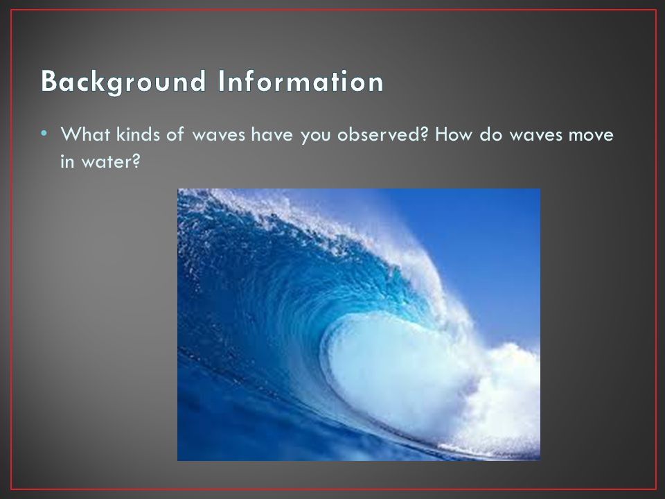 What kinds of waves have you observed How do waves move in water