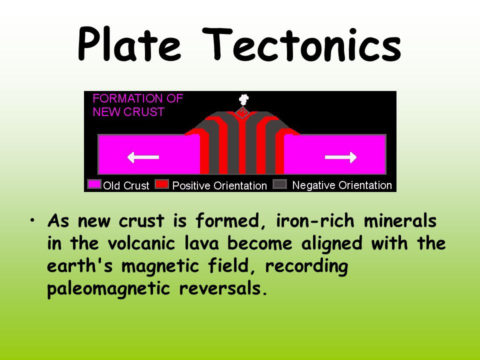 Plate Tectonics As new crust is formed, iron-rich minerals in the volcanic lava become aligned with the earth s magnetic field, recording paleomagnetic reversals.